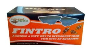 fintro-new-fish-intoduction