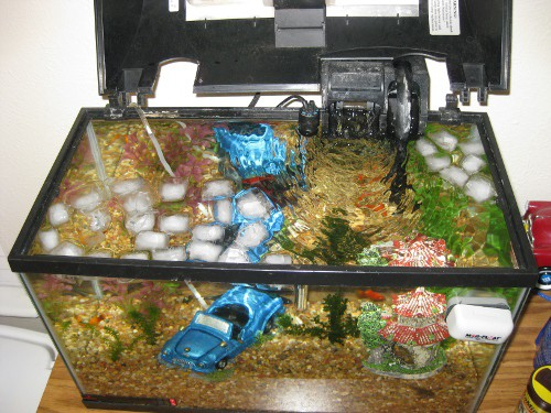 how to cool down a fish tank aquarium tropical fish site
