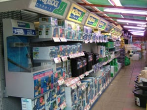 Bourne end maidenhead aquatics fish store review for Fish stores in ma