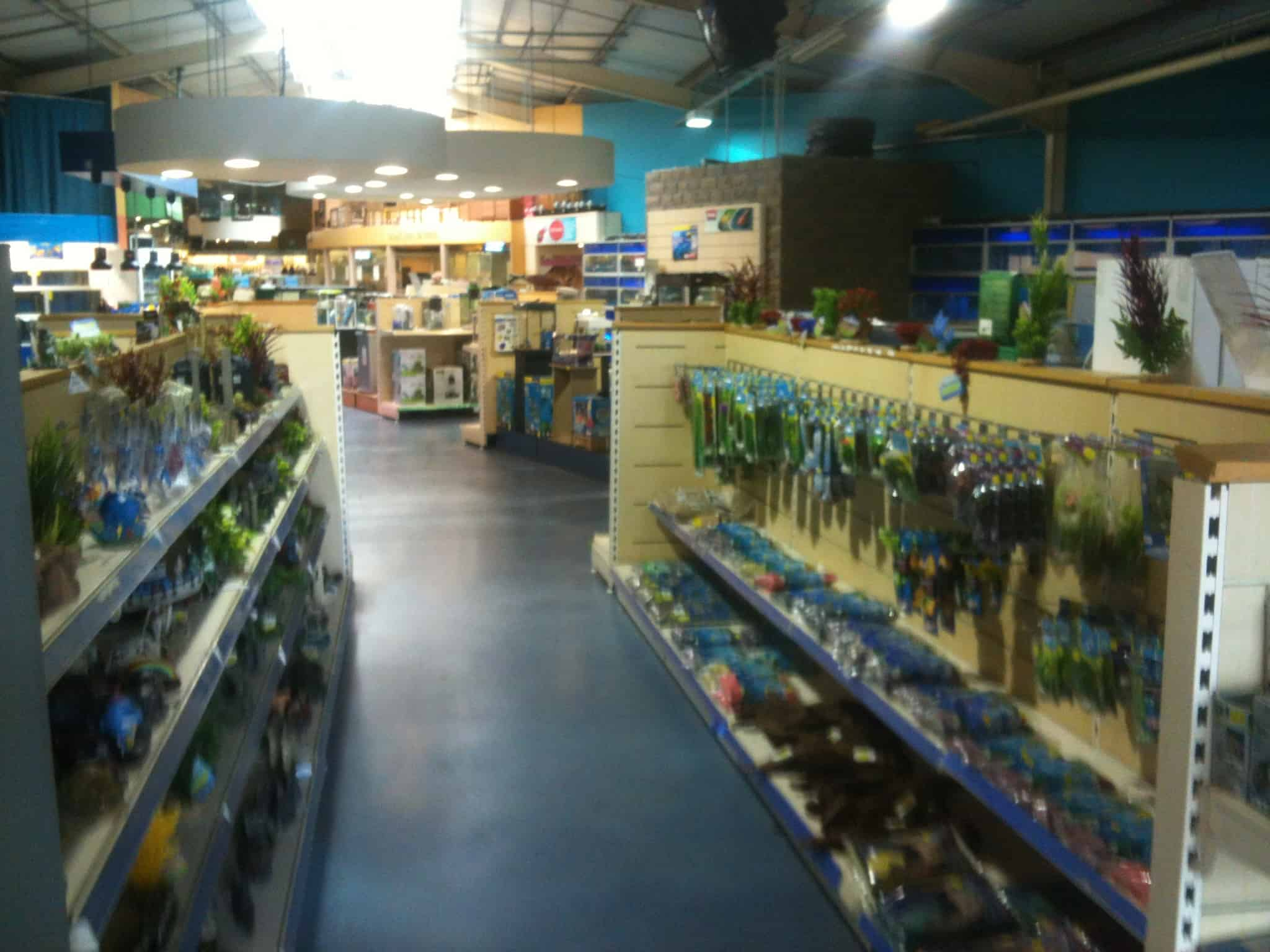 Tong garden centre fish store review tropical fish site for Salt water fish store