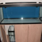 Planning The Malawi Fish Tank Set Up