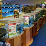 Worthing Findon Maidenhead Aquatics Fish Store Review