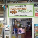 Brighton Maidenhead Aquatics Fish Store Review