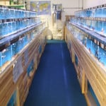 Carlisle Maidenhead Aquatics Fish Store Review