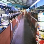 Swansea Maidenhead Aquatics Fish Store Review