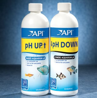 Home Remedy to Up the pH for a Fish Aquarium | Animals ...