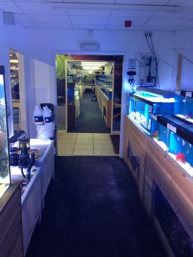 maidenhead-aquatics-leeds-south-3