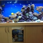 Isle Of Wight Maidenhead Aquatics Fish Store Review