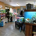 store_newent_1