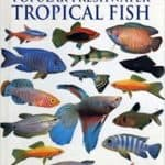 Popular Freshwater Tropical Fish Book Review